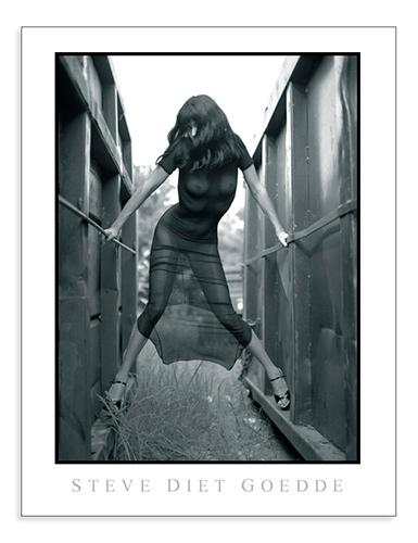 Steve Diet Goedde Poster, Gina Velour Black Dress