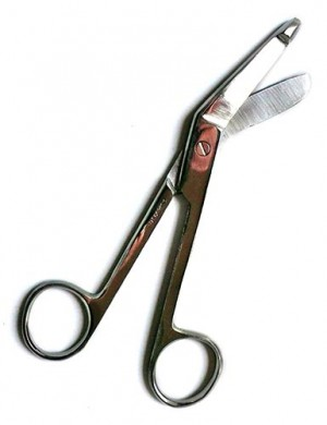 Curve Tip Surgeon's Scissors