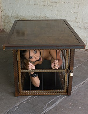 Hammered Steel Coffee Table/ Cage