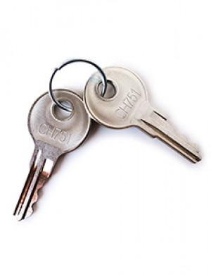 Premium Humbler replacement keys, pair