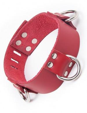 Locking 3 D-ring Collar, Red