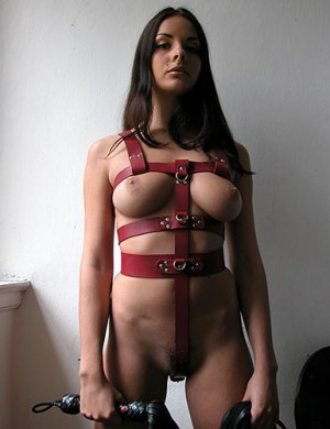 Custom Body Harness, Locking