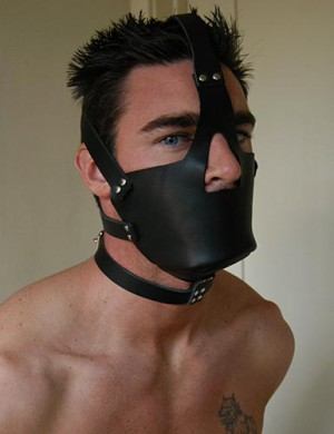 Leather Head Harness with Muzzle