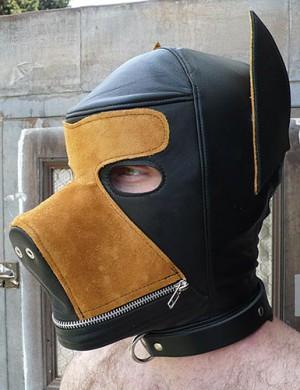 Two-Toned Dog Hood