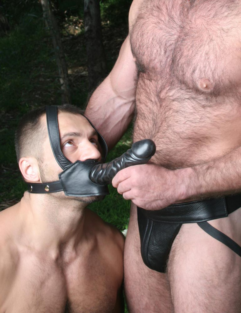 Dildo head harness