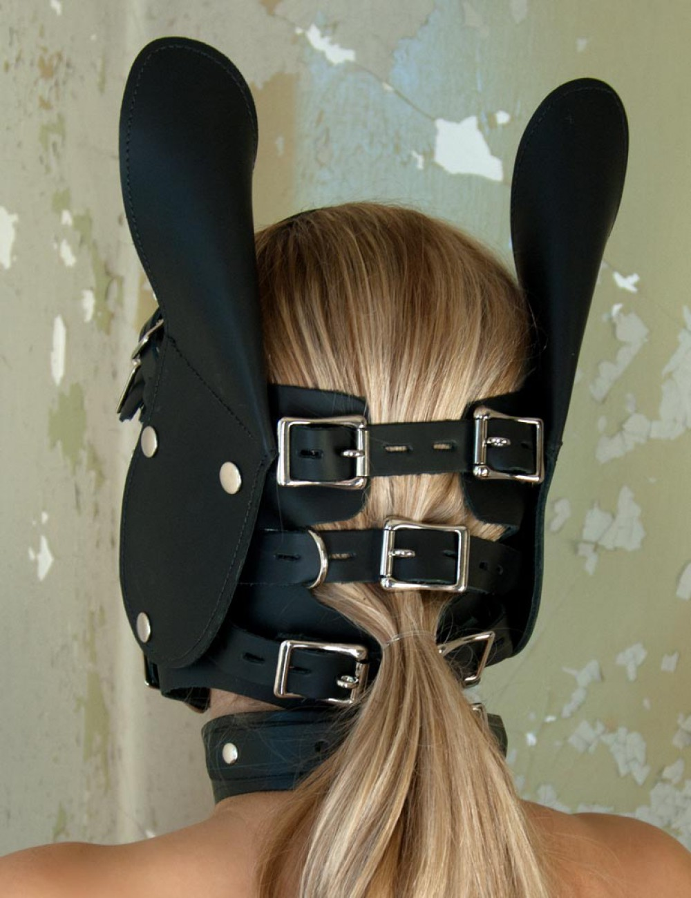 Pony Head Bridle