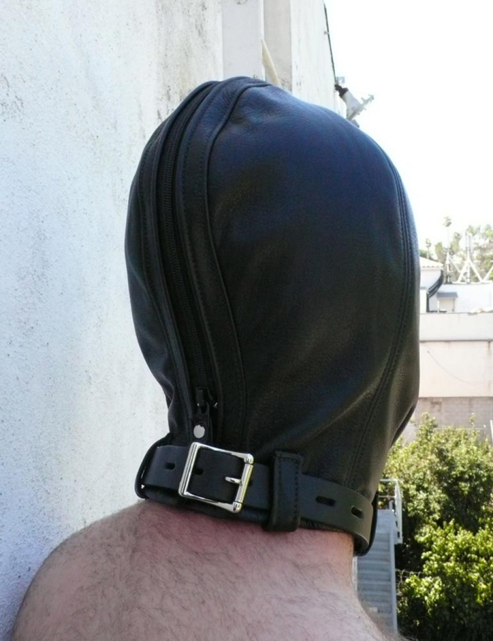 Insect Hood
