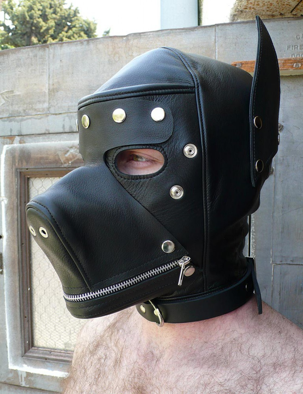 Leather Dog Hood with Snap-on Muzzle, Blindfold and Gag