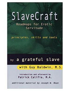 SlaveCraft (Guy Baldwin)