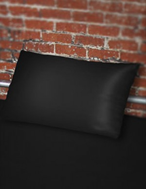 Fluid-Proof Pillowcase by Sheets of San Francisco
