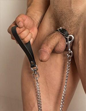 Buckling Cock Ring/Chain Leash Set