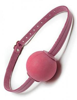 Pink Ball Gag