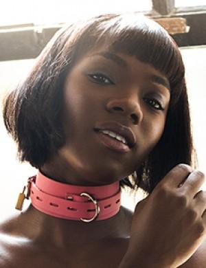 Pink Deluxe Buckling Collar