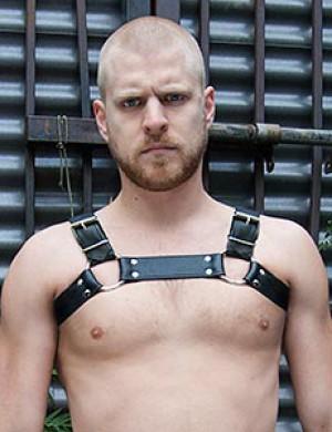 The Bruiser Bulldog Harness