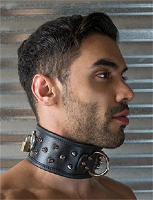 Alpha Dog Collar with Spikes