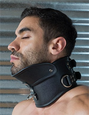Deluxe Padded Leather Posture Collar w/ D Rings