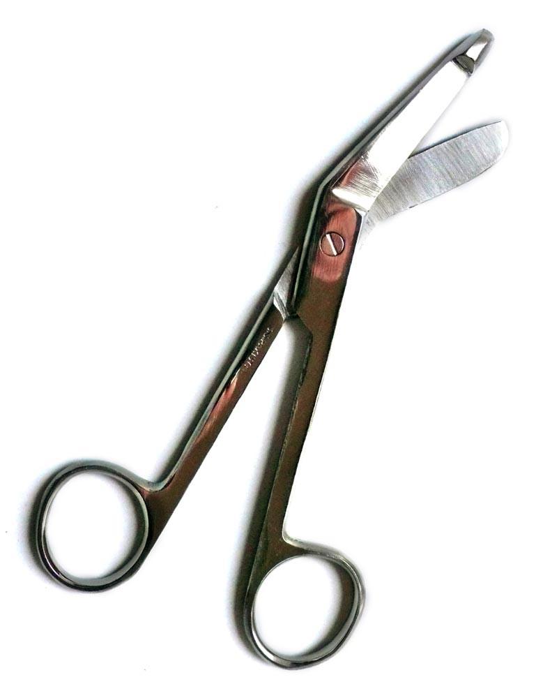 Curve Tip Surgeon's Scissors