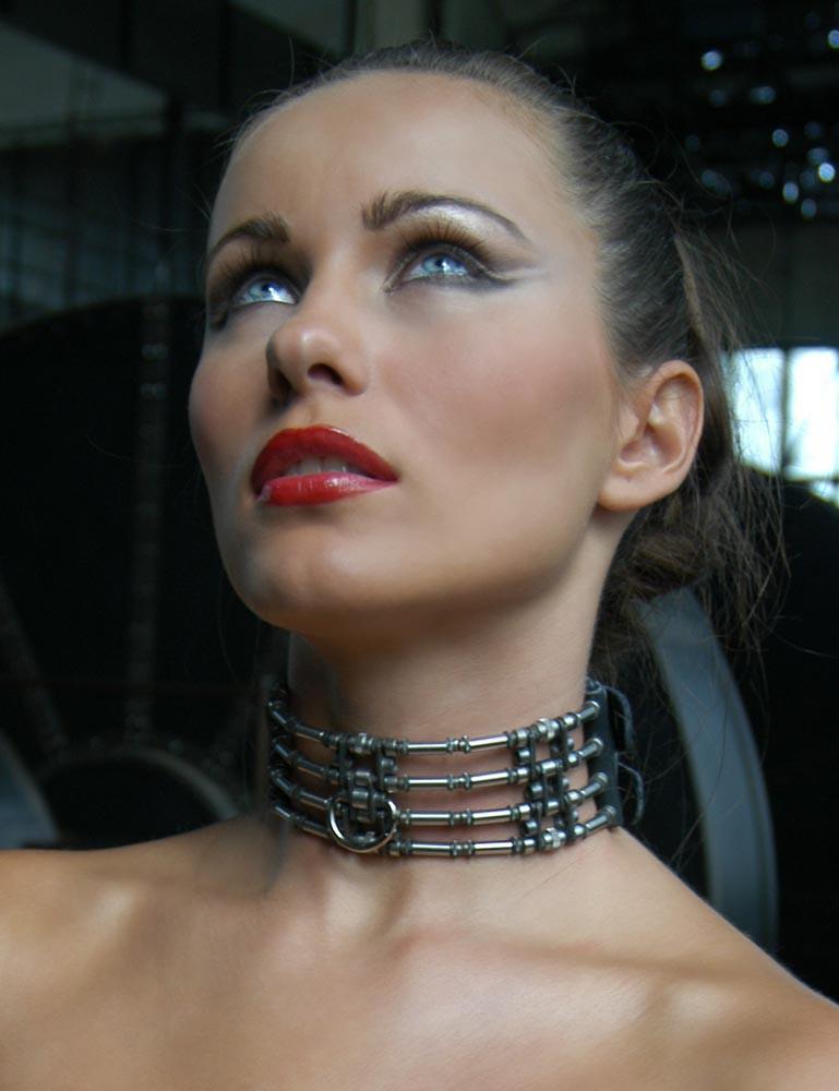 Calix Stainless Locking Jewelry Collar