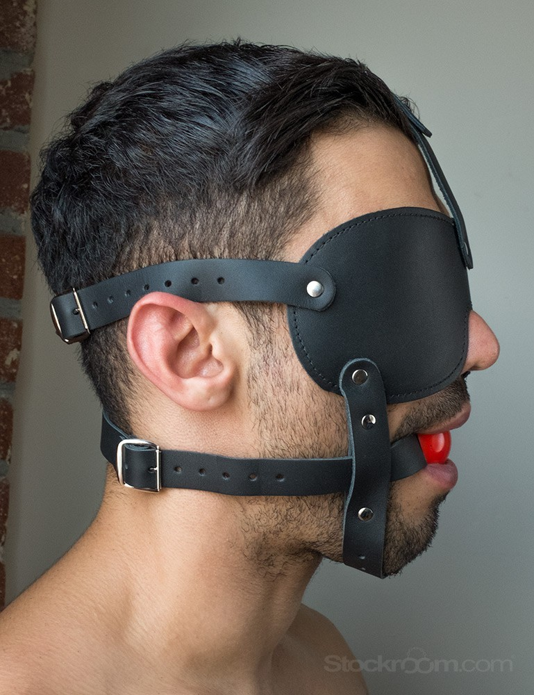 Ball Gag and Blindfold Harness
