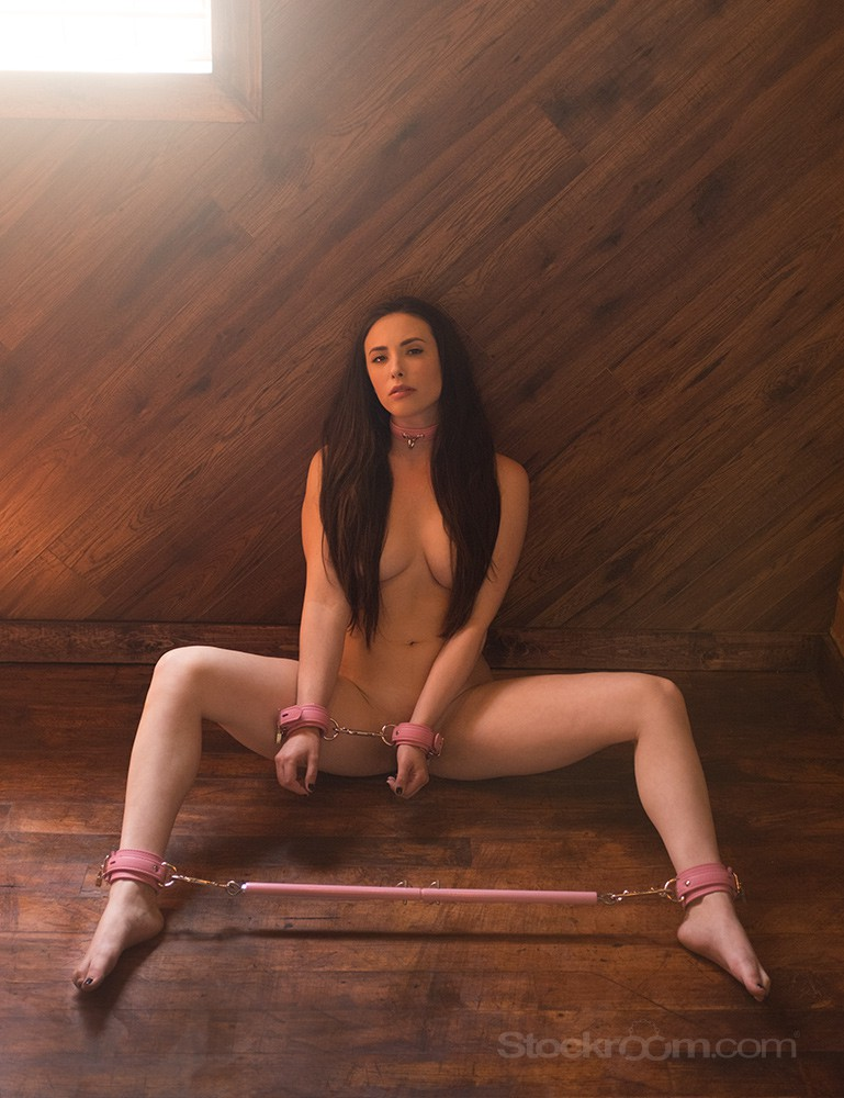 Pink Adjustable Spreader Bar - Casey Calvert