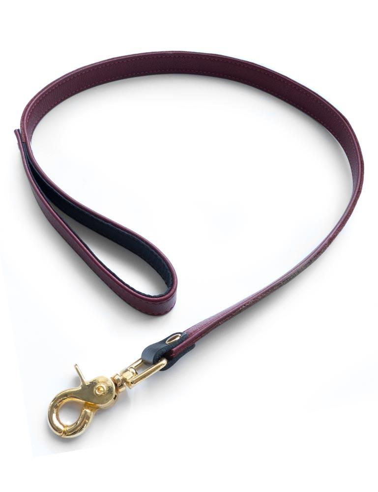 JT Signature Collection Leather Restraint Bondage Leash