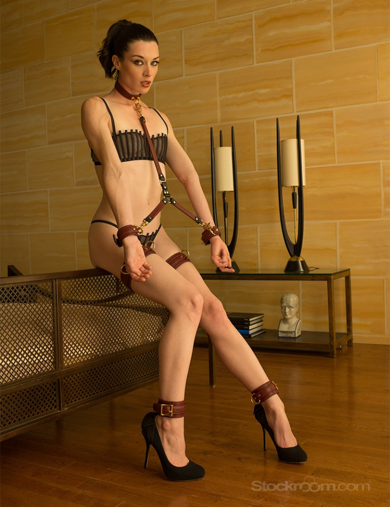 JT Signature Collection Leather Restraint Bondage Tether Stoya