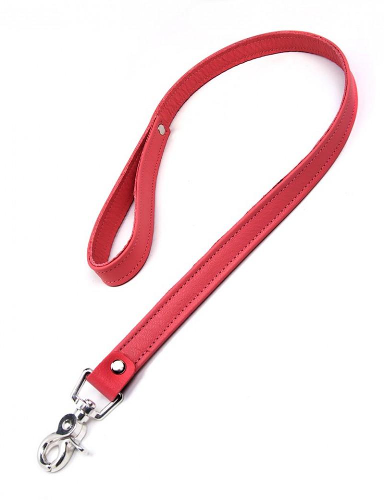 Premium Garment Leather Leash, 2.5'