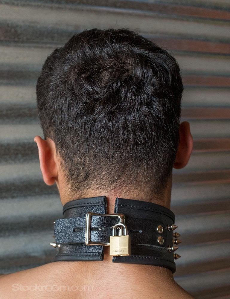 Alpha Dog Leather Collar with Spikes