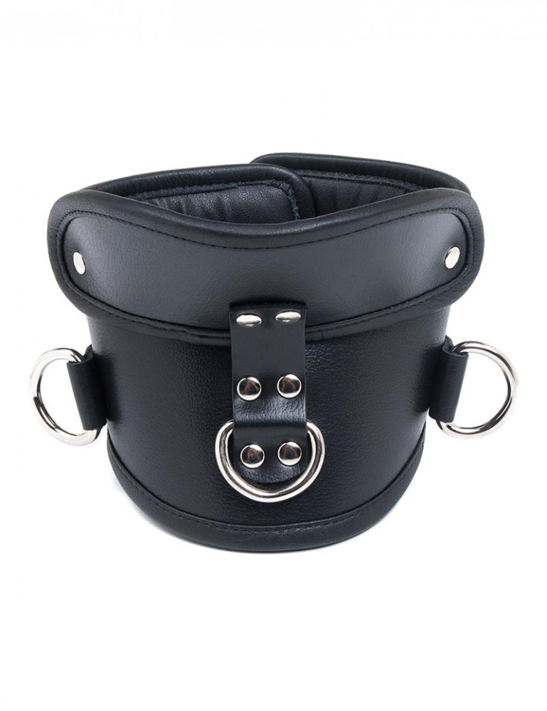 Deluxe Padded Leather Posture Collar