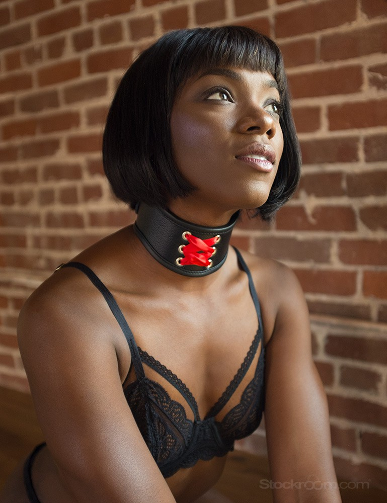 Red Laced Posture Collar