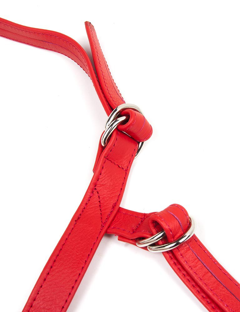 Terra Firma Dee Leather Strapon Dildo Harness, Red